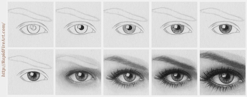 How to draw eyes step by step rapidfireart