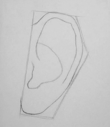 how to draw an ear step 2