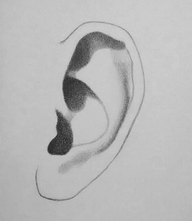 how to draw an ear step 4