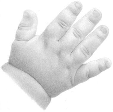 how to draw a baby hand with pencil