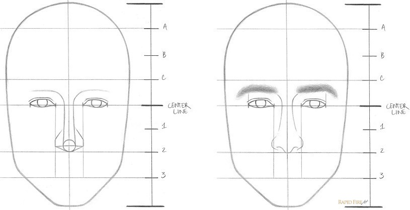 Line Drawing Of Human Face : Learn how to draw a face in easy steps beginners