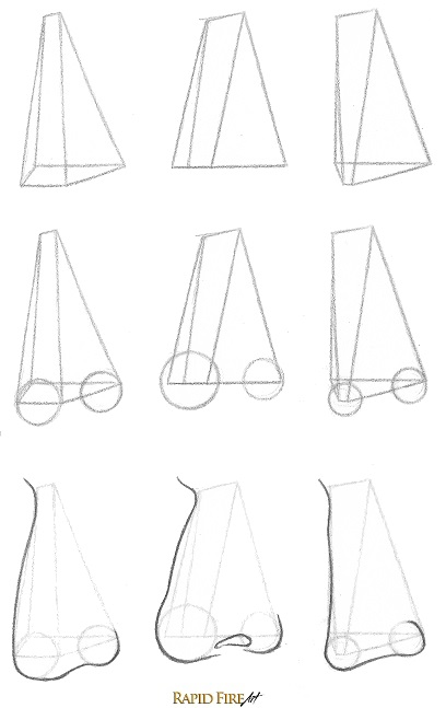how to draw uniquely shaped noses in 3/4 view