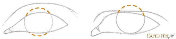 How to Draw Different Eye Shapes Iris Example RFA