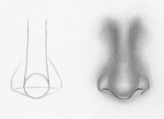 How To Draw A Nose From The Front 7 Easy Steps Rapidfireart