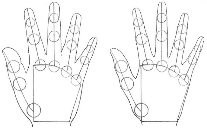 How to Draw Hands Step 7