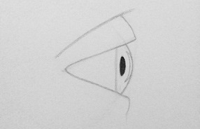 drawing eyes from the side step 6
