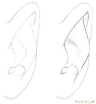 How to draw an ear from the front | RapidFireArt