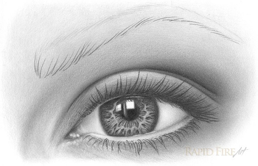 How To Draw An Eye Brow With Pencil