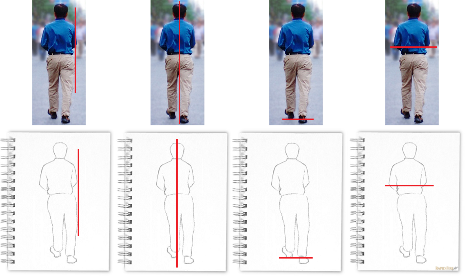 How to draw using the sight size method _ Vertical and Horizontal Relationships Comparison